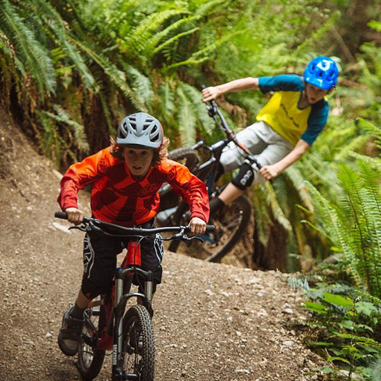 Picture for category Youth MTB